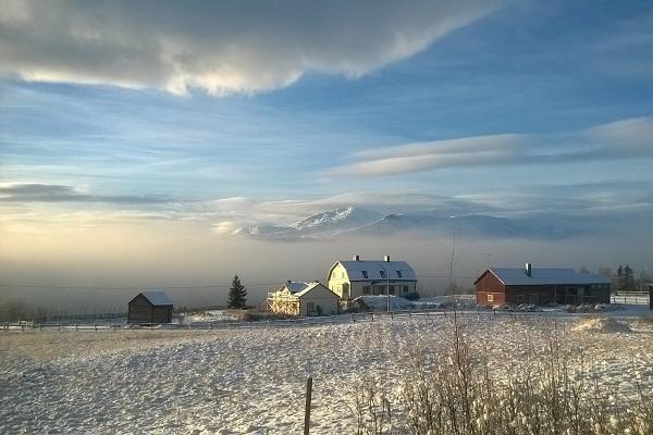 gården vinter-website
